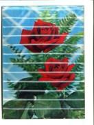 "Cp - Carte En 3D  ""VISIORELIEF"" - LES DEUX ROSES - Cartes Postales"