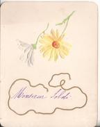 Carton Carte  Chromo  Fleur En Relief - Old Paper