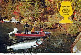 1 AK Kanada New Brunswick * Greetings From The World's Champion Fishing Country *