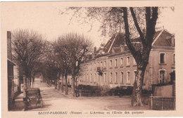 Carte Postale Ancienne De L'Yonne - Saint Fargeau - L'avenue Et L'Ecole Des Garçons - Automobile - Saint Fargeau