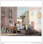 LPMTP7854CPA-LFTC177TABU.Tarjeta Postal De GRAN CANARIAS.Edificios,animal,fuente En Una  Plaza De LAS PALMAS.Canarias. - Vacas