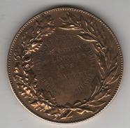 Médaille En Bronze-  République _ Exposition De Limoge 1898  Mr Dauzet (assistance Par Le Travail ) - Professionnels / De Société
