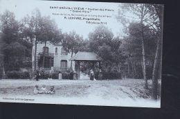 SAINT BREVIN    NEW - France