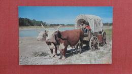 Tom & Jerry  Oxen Wagon  Wall SD  -ref 2538 - Altri