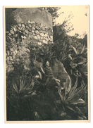 PHOTO PAPIER FORT MONTE-CARLO MARS 1946 - Luoghi