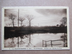 LOIRE ATLANTIQUE   44   ST-LYPHARD   -   LA GRANDE BRIERE  -  REFLETS  SUR L´ETANG DU PELO        TTB - Saint-Lyphard