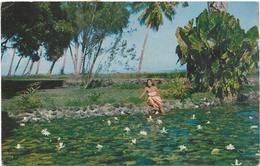 POLYNESIE. TAHITI - Polynésie Française