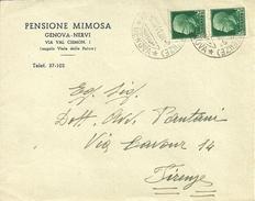 """Busta Pubblicitaria """"Pensione Mimosa"""" Genova Nervi, Via Val Cismon, Angolo Viale Delle Palme - Pubblicitari"""