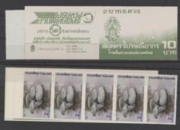 Thailande Mushrooms Champignons - Champignons