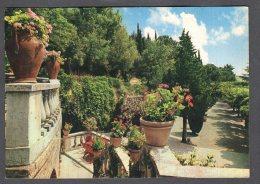 1966 CHIANCIANO TERME SORGENTE S. ELENA FG V  SEE 2 SCANS - Italia