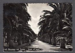 1956 S. BENEDETTO DEL TRONTO VIALE AL MARE FG V  SEE 2 SCANS - Altre Città