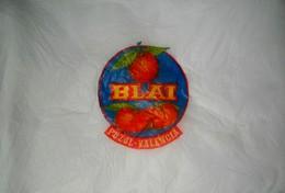 # BLAI VALENCIA SPAIN PAPER FRUIT WRAPPER Type Large Orangenpapier Papier D´Orange Naranja Arancia Frutta - Frutta E Verdura