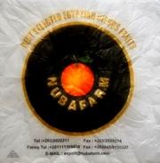 # NUBAFARM EGYPT PAPER FRUIT WRAPPER Type Large Orangenpapier Papier D´Orange Naranja Arancia Frutta - Frutta E Verdura