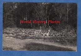 CPA Photo - ANGERMUNDE - Groupe De Garçon Militaire - Juli 1936 - Jeunesse Hitlérienne ? Hitlerjugend ? - WW2 - Angermuende