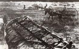 Russie Ferme Sovietique Debris Avion Allemand WWII WW2 Ancienne Photo 1941