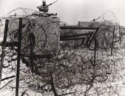 Libye Siège De Tobrouk Defense Australienne Et Britannique WWII WW2 Ancienne Photo 1941