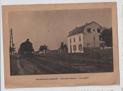 Dilsen Driepaalhoeve - Jeugdheem  -  Met Spoorweg En Trein - Dilsen-Stokkem