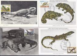 Belgie 1344/47 + 1348 - Maximumkaarten - Zoo Van Antwerpen III - Reptielen - 1961-1970