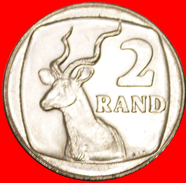 § ANTELOPE: SOUTH AFRICA ★ 2 RANDS 1991 MINT LUSTER! LOW START★ NO RESERVE! - Zuid-Afrika