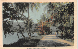 ¤¤   -  TRINIDAD   -  A Nord Coast Road   -  ¤¤ - Trinidad
