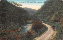 ¤¤   -  JAMAÏQIE  -  Greeting From Jamaïca - Bog Walk, 19 Miles From Kingston - Jamaïque