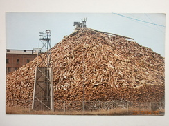 Postcard A Maine Woodpile Pulpwood Used In Paper Manufacturing One Of Maine's Major Industries My Ref B11043 - Cultivation