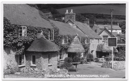The Masons Arms, Branscombe (Ye Olde Masons Arms) - Real Photo - Unused - Chapman & Sons - Other