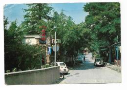 BIVIGLIANO VIA ROMA BAR TABACCHI BALDINI   VIAGGIATA FG - Firenze