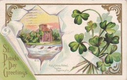 Saint Patrick's Day With Holy Cross Abbey Tipperary 1913 - Saint-Patrick's Day