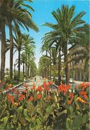 PALMA DE MALLORCA - Paseo Sagrera - Palma De Mallorca
