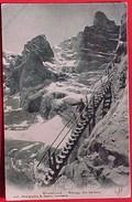 Cpa SUISSE BE , GRINDELWALD Animée , BAREGG DIE LEITERN , 1906, R Gabler Interlaken Recto Verso  Prix Fixe - BE Berne