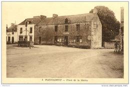 56/CPA - Pleucadeuc - Place De La Mairie - Autres Communes
