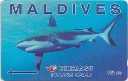 Maldives - Dhirraagu - Grey Shark - 202MLDE - 100Rf, Used - Maldives
