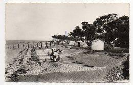 NOIRMOUTIER--Les Campeurs Du Bois De La Chaise (animée),cpsm 14 X 9  N°3410  éd  Rema........à Saisir - Noirmoutier