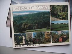 Australië Australia Victoria Dandenong Ranges - Australië