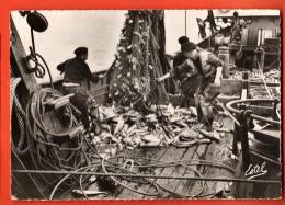 IBH-12 Pêche Au Chalut, Chalutier, Vidé De Ses Poissons. Cachet La Rochelle Ses Monuments Son Port De Pêche. En 1959, GF - Pêche