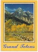 GRAND TETON NATIONAL PARK - WYOMING - 1992 - Etats-Unis