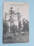 Uroun Station / Station D'Ouroun ( Missionnaires ) ( Papua ) Anno 1934 ( Zie Foto Details ) !! - Papouasie-Nouvelle-Guinée