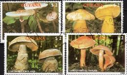 Naturschutz Pilzarten 1989 GUYANA 2480/4 O 12€ Pilze Dickfuß Ritterling Schirmling Gürtelfuß Topic Set Bf Mushrooms - Protection De L'environnement & Climat