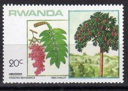 Rwanda 1983 Alberi Vegetazione Hagenia Abyssinica - Vegetazione
