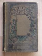 LE MAITRE DE L ABIME  COLLECTION HETZEL   LAURIE   ROUX - Books, Magazines, Comics