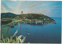 V569 Porto Azzurro (Livorno) - Isola D'Elba - Panorama Notturno Notte Nuit Night Nacht Noche / Non Viaggiata - Italia