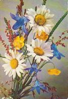 Bouquet        H25        Bouquet ( Yves Rocher ) - Fleurs