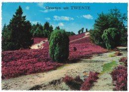 KC74     Overijssel - Groeten Uit Twente - Netherlands