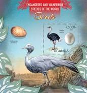 UGANDA 2013 SHEET AVES HUEVOS PASSAROS BIRDS OVOS OISEAUX OEUFS EGGS Ugn13115b - Uganda (1962-...)