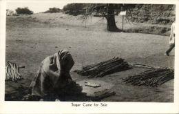 Nigeria, KANO, Native Woman Selling Sugar Cane (1930s) RPPC - Nigeria