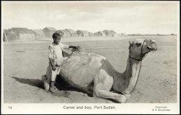 Sudan, PORT SUDAN, Native Boy With Camel (1950s) RPPC - Sudan