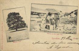 Tanzania, ZANZIBAR, Mangoe Tree, Natives At The Water Pipe (1905) - Tanzania