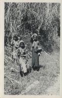 New Guinea, Native NUDE Papua Women (1950s) RPPC - Papua New Guinea