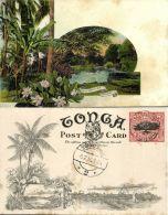Tonga Islands, TAFUMAHINA, Palm Trees (1909) Pre-Printed Stamp - Tonga